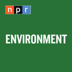 Climate change: Melting Arctic ice