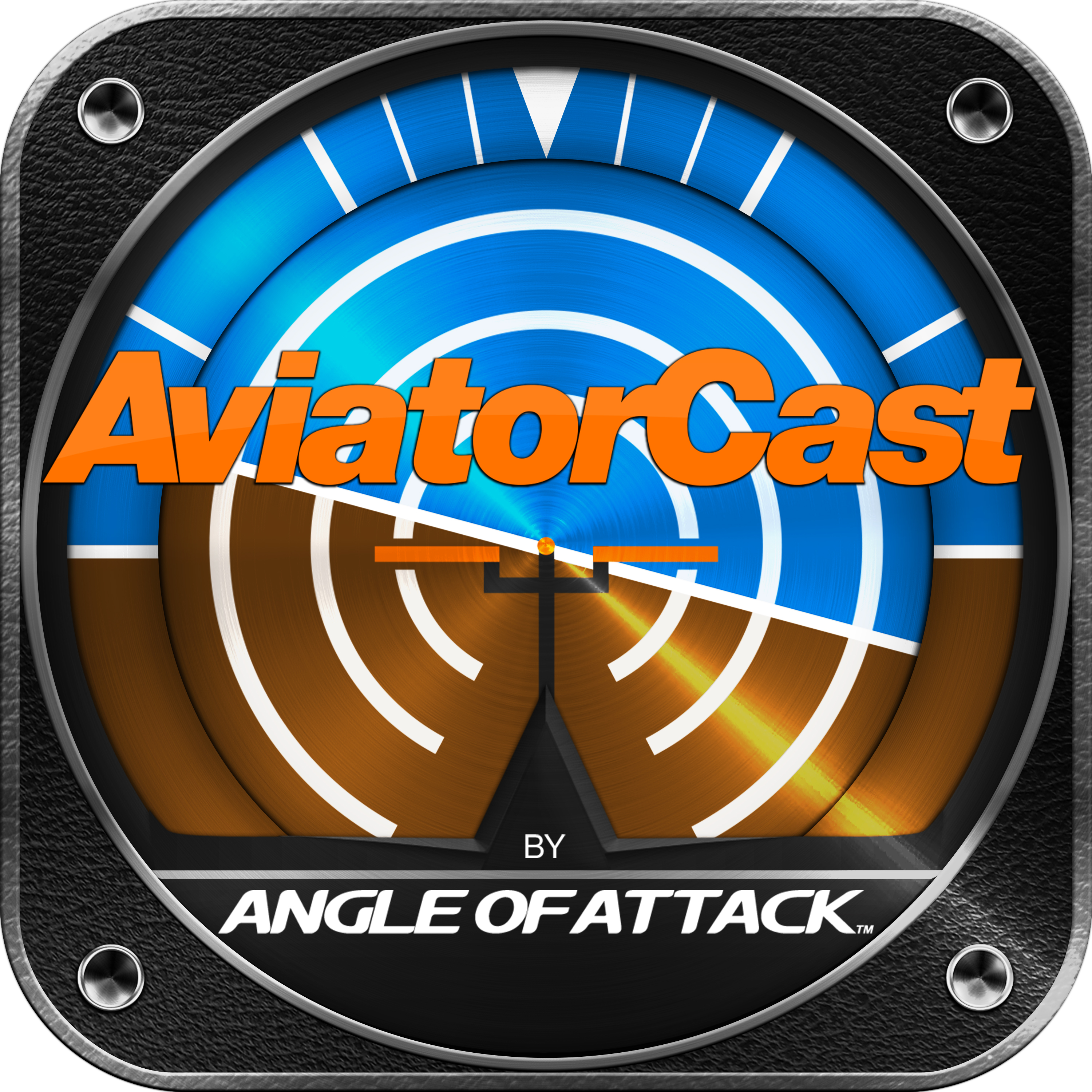 Josh Flowers from Aviation101: Tools to Help Avoid CFIT