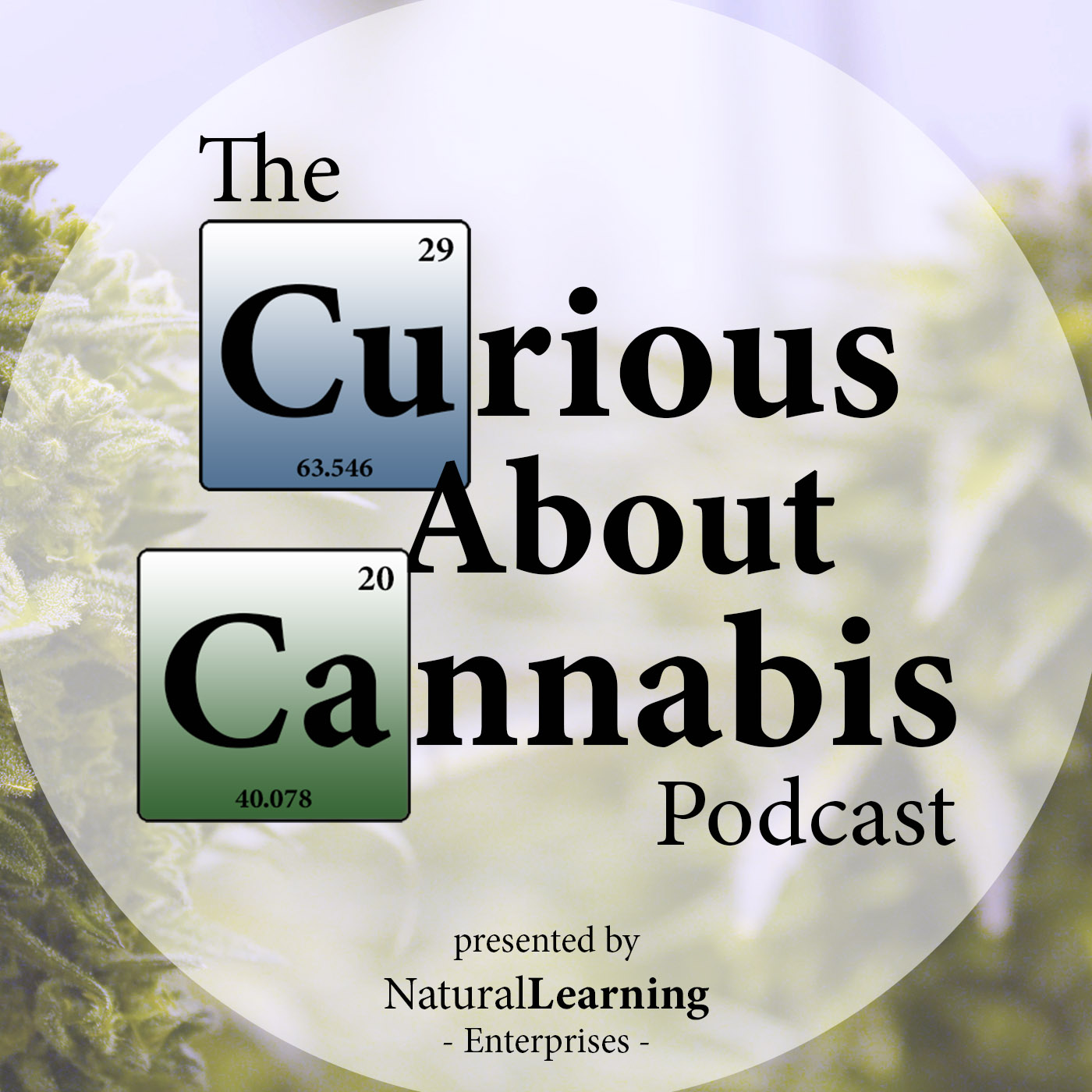 Linda Klumpers PhD on Cannify, Cannabinoid Pharmacology, Cannabis for Pain