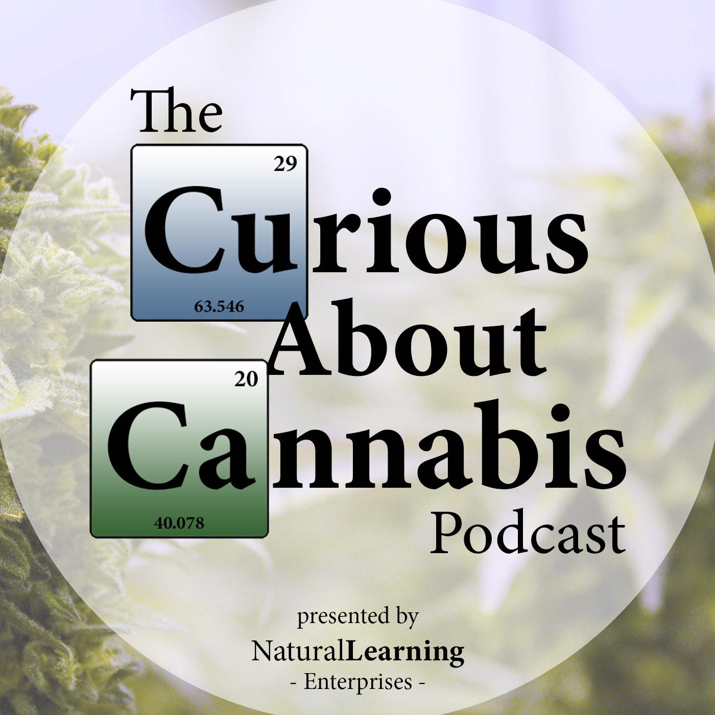 Andrew DeAngelo on Cannabis Activism