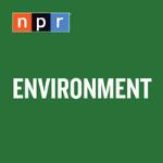 Environment: NPR
