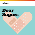 Dear Sugars Presents: Dear Hank and John