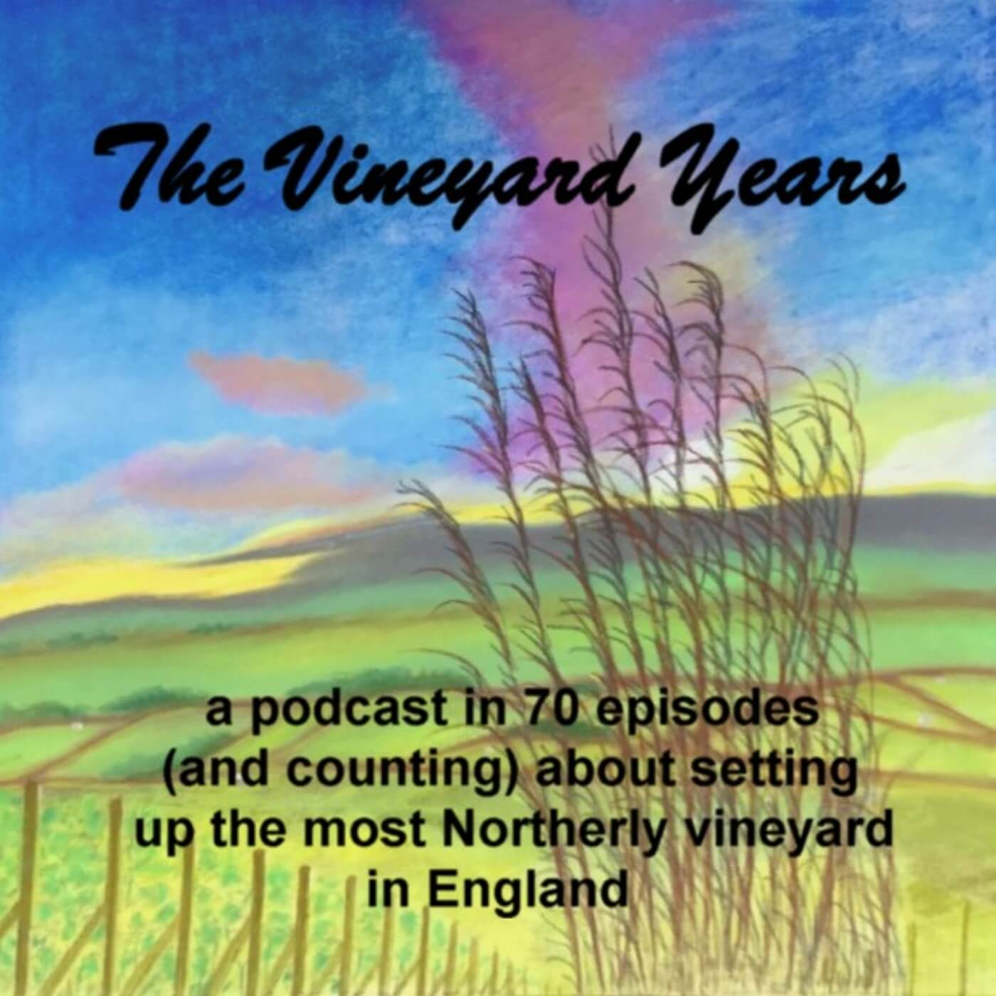 Vineyard Years Podcast Chapter 2