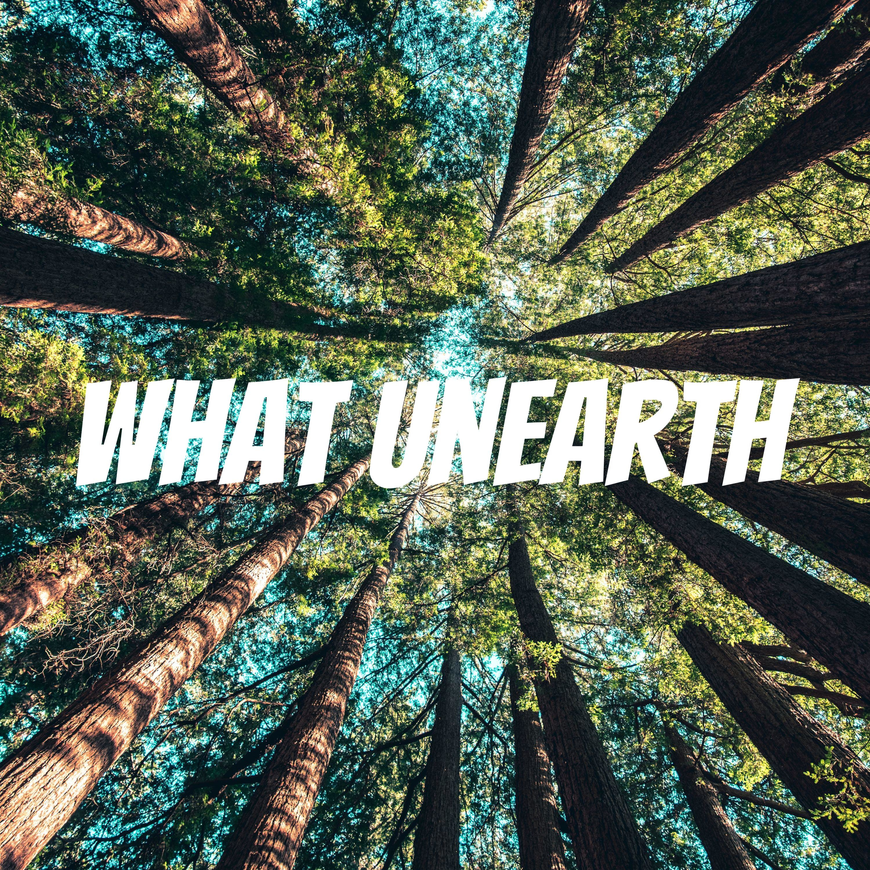 Short UnEarth 13: Circle of Solidarity - Greenpeace India's Farmer Relief Program
